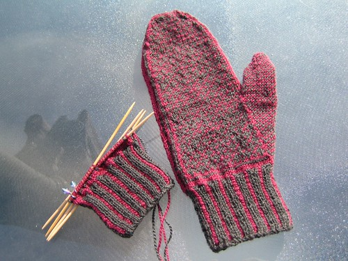 Enemoi Mitts Palm