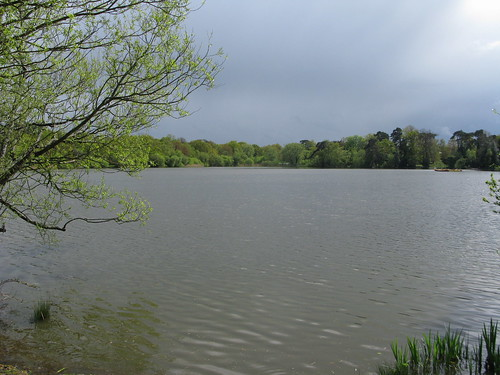 Petersfield Lake