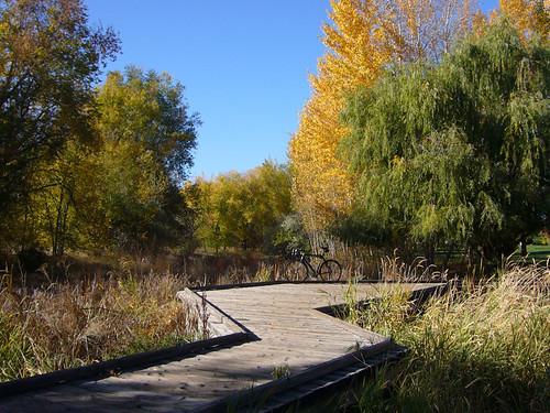 2008-Autumn-01