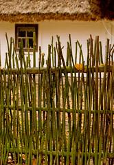 fence (greglobinski) Tags: museum poland sierpc mazovia dragondaggerphoto themuseumofthemazoviancountrysideinsierpc mazoviancountryside