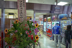 P1030649 (shockatz) Tags: japan hdr lucisart japanhdr