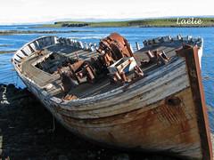 vg3059 (Lalie) Tags: iceland islande flatey pave breiafjrur