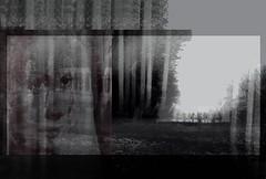 La Maison des morts (Yann Seitek) Tags: collage apollinaire premireguerremondiale surimpression guillaumeapollinaire alcools abelgance marietudor lachutedelamaisonusher lamaisondesmorts jeanepstein1923 georgesmourier thehouseofdeath