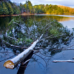 Meech Lake (ViaMoi) Tags: park blue autumn lake snow canada color colour reflection tree green water photography golden ottawa meechlake canon40d viamoi meechlakeaccord gateneau