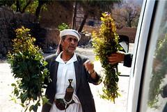 Qat (vittorio vida) Tags: windows portrait people night children doors muslim islam religion yemen qat yemensocotra