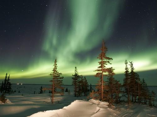 La Aurora Boreal 3072206740_ce46617bec