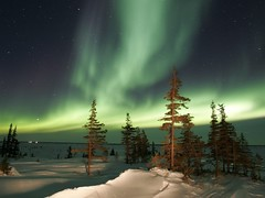 Aurora borealis (kruhme) Tags: santa flowers schnee trees light red sky snow ski mountains tree green fall sports kids garden season islands luces licht landscapes countryside scenery shoes paradise desert earth nieve north 2006 pole exotic dresses aurora worlds trips invierno oceans claus coats scenes vacations baum jackets environments boreale auroraboreal mywinners abigfave omot fotofanaticus auroraborealwinter superstarthebest