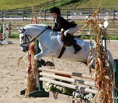 USEA Novice Equestrian Championships (rbglasson) Tags: horses horse jumping connecticut riding simsbury equestrian d40 nikno nikond40 photosandcalenda