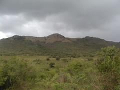 Natal Landscape