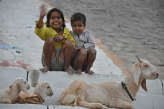 Children and Goats, Varanasi India (Laura Dunn-Mark) Tags: travel boy india girl smile kids river children sister brother steps wave goat siblings goats varanasi 2008 ganga ganges ghats ghat uttarpradesh lauradunnmark