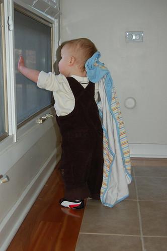 Little Linus