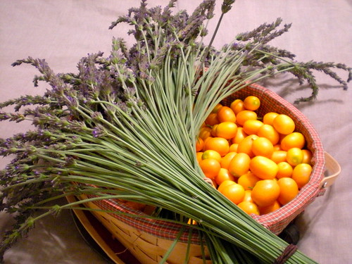 lavender and kumquat