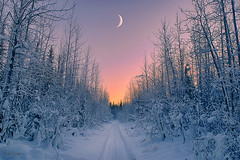 Waxing Crescent Rising (Karnevil) Tags: sunset usa moon snow cold alaska america us nikon glow unitedstates unitedstatesofamerica trail northamerica arcticcircle snowmobiling d610 snowmachining bettles waxingcrescent bettleslodge bettlesairfield waxingcrescentrising