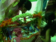 Picture 048 (swethareddy1) Tags: cradle cermony