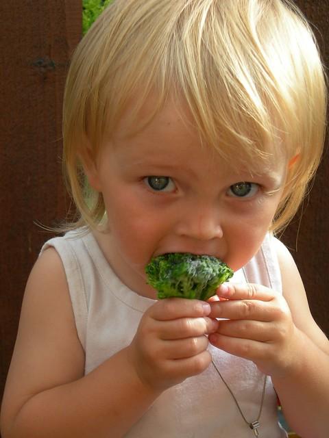 건강한 식단-'나의 건강 관리 요령.'