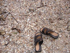 long path to go (TrustedSign) Tags: thailand shoes path sandals shell krabi anawesomeshot