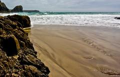 View of Lizard Point (Will Jones UK) Tags: sea sand rocks cornwall waves cove lizard kynance