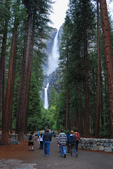 Yosemite Fall@Yosemite National Park (Yang and Yun's Album) Tags: california ca usa nikon yosemite nikkor  nikk   d80
