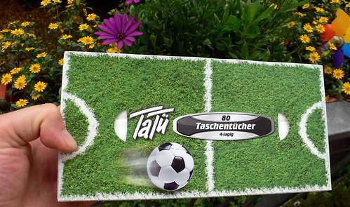 TaTü Tata - der Heuschnupfen ist da!