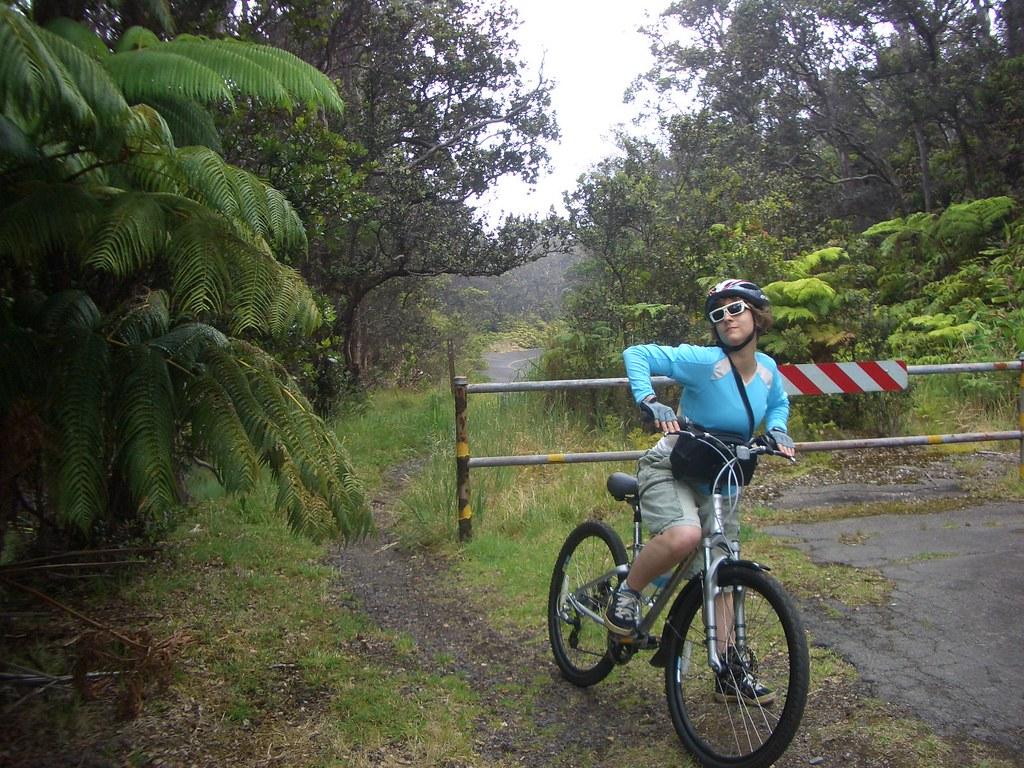 Wife + Comfort Bikes