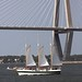 Sailboat Passing the Cooper River Bridge