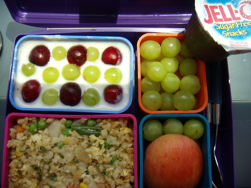 Laptop Lunch #4