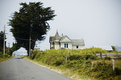 The House (Kim Smith-Miller) Tags: california old friends summer tree abandoned fun coast humboldt decay victorian nikond50 bikeride arcata 2008 goodday thebottoms collegehouse nikkor85mmf18