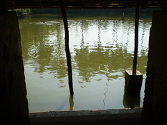 temple pond (sajeesh perumpilavil) Tags: tourism temple pond places kerala favourites subrahmanya manjeri karikkad
