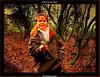 A Bird in The Hand. (Irishphotographer) Tags: ireland birds colorfull sureal hdr eyecatcher irishart kinkade loughneagh beautifulireland hdrunlimited exploretop20 top20ireland peatlands irishphotographer besthdr imagesofireland picturesofireland pentaxk20d kimshatwell irishcalender09 calendarofireland breathtakingphotosofnature beautifulirelandcalander wwwdoublevisionimageswebscom