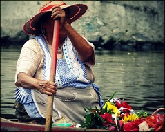 A flower seller at Xochimilco (Tansy Liverwort) Tags: mexicocity xochimilco flowerseller floatingsellers