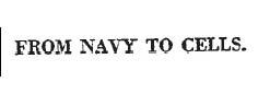 sailor headline