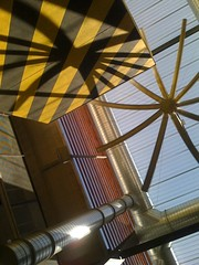 view from below (alist) Tags: campus move alist asu robison alicerobison ajrobison