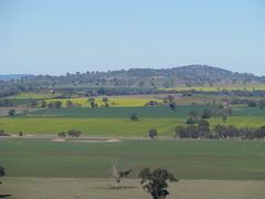 Crops (florahaggis) Tags: landscape farm lookout