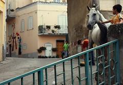 per le vie di un paese senza tempo (rosa_pedra) Tags: sardegna animals holidays sardinia festa cavalli cavallo animali vacanze orgosolo ferragosto assunzione 15agosto cavalcata fuoriluogo parriglia
