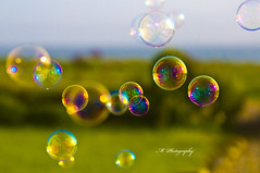 Bubbles Bubbles Everywhere But Not A Drop To Drink (Michelle in Ireland) Tags: pink blue green colors yellow coast colours bokeh circles background balls sphere round dreamcatcher bej challengeyouwinner aplusphoto acg1stplacewinner