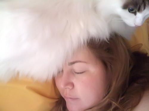 Cat is My Hat.