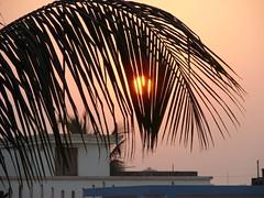 The veil (asis k. chatt) Tags: sunset sun picturesque excapture clevercreativecapture ~nature