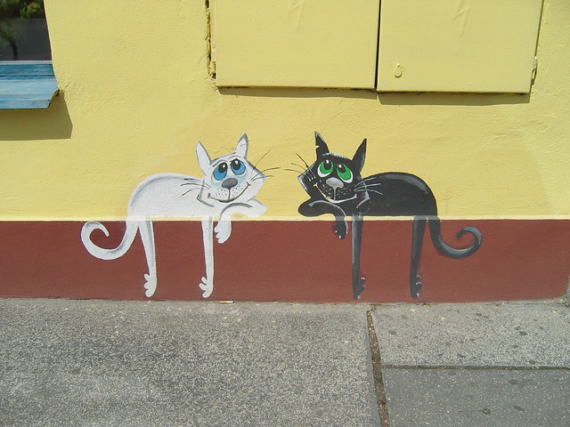 Wall painting of two cats in Trencin
