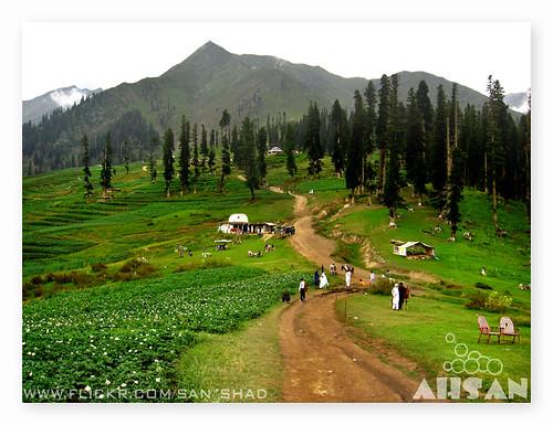 Laalazaar (Read a 10 minute story)
