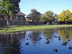 Pinner Memorial Gardens (diamond geezer) Tags: harrow pinner westhouse pinnermemorialgardens