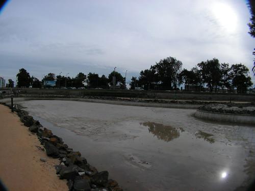 Limpeza do lago para canoagem do Jamor