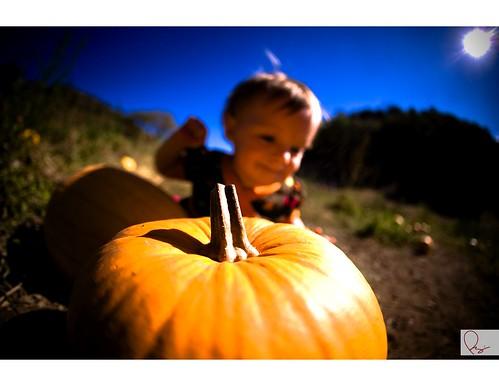 Pumpkin - 03