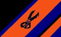 sigler scissor flag 10