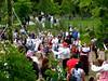 midsummer:2 2008