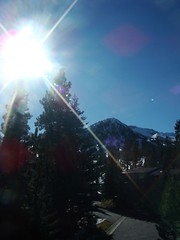 mammoth lakes, ca (my friends call me charlie) Tags: trees mountains snowcapped