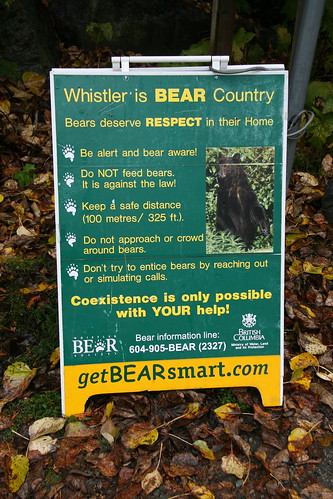 Bear Country by you.
