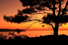 Solpor dende Udra (_madmarx_) Tags: sunset sea sky rasbaixas galicia otoo puesta pontevedra outono xsi solpor bueu pieiro morrazo flickrhearts superhearts caboudra canoneos450d colourartaward platinumheartawards cessu brilliantphotography thesuncard spiritofphotography discoveryphotos beautifulshot galizaenimaxes photographersgonewild photographersreallygonewild geotaggedgalicia flickrsbestseriousphotographers