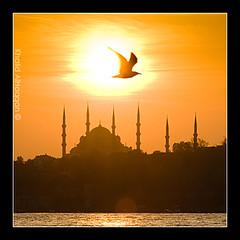 Faith Rising (Khalid AlHaqqan) Tags: sunset orange silhouette canon turkey islam towers istanbul mosque khalid soe 100400mm allah masjed outstandingshots flickrsbest 40d mywinners abigfave kuwson alhaqqan diamondclassphotographer goldstaraward alemdagqualityonlyclub mathana flickrclassique khalidalhaqqan