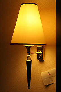 Our Pet Lamp