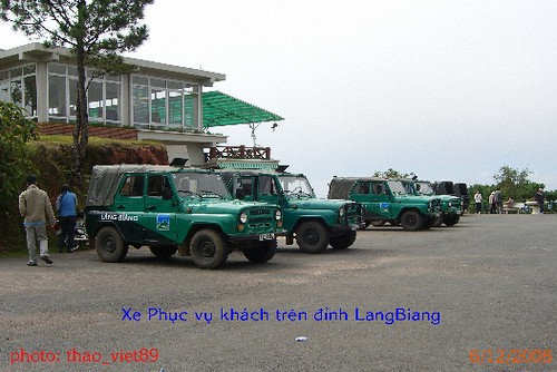 4282 xe tren dinh LangBiang by you.